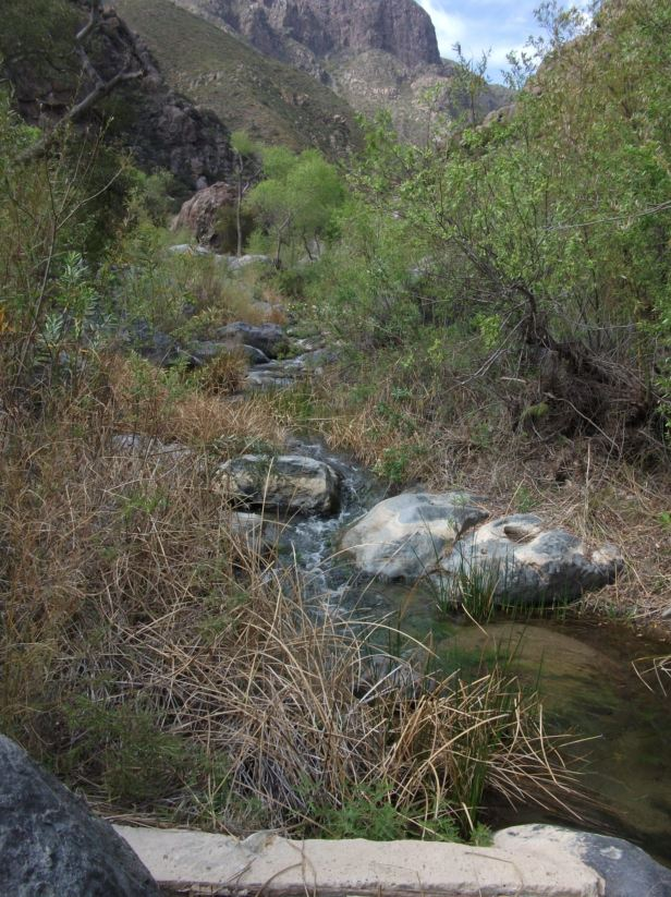 water quality sampling: Rio de Rancho San Carlos